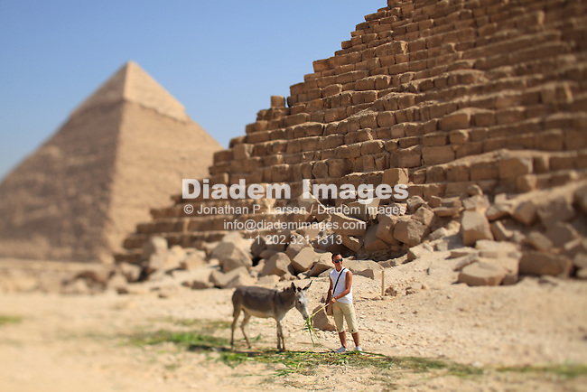 A man posing for a picture while feeding a mule at the pyramids, Giza, Egypt.