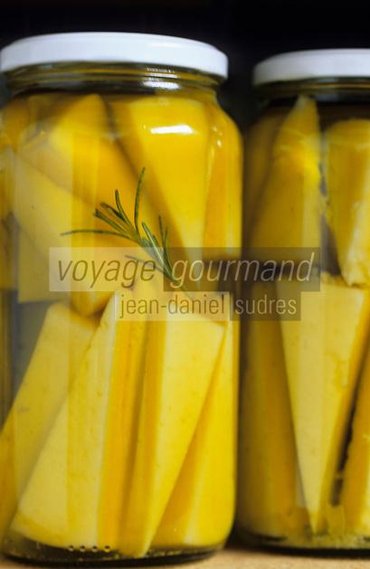 Europe/Espagne/Castille/Morales del Vino : Fromage de brebis à l'huile de Vicente Pastor