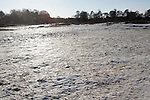 Heathland frozen over, The Big Freeze, January 2009, Shottisham, Suffolk, England