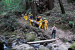 Rescue of injured hiker at Big Basin State Park,  Skyline to the Sea Trail near Berry Creek Falls