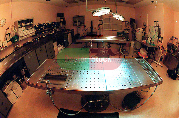 room with stainless steel tables for autopsies in pathology lab