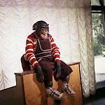 "Кадр из фильма ""Говорящая обезьяна"" (1991) USSR; Режиссер: Георгий Овчаренко; В ролях: Армен Джигарханян, Валерий Золотухин, Борис Новиков, Михаил Кокшенов, Людмила Нильская, Татьяна Догилева, Александр Леньков, Наталья Крачковская; / Filmstill ""Govoryashchaya obezyana"" (1991); СССР; Director: Georgiy Ovcharenko; Stars: Armen Dzhigarkhanyan, Valery Zolotukhin, Boris Novikov, Mikhail Kokshenov, Lyudmila Nilskaya, Tatyana Dogileva, Alexander Lenkov, Natalya Krachkovskaya."