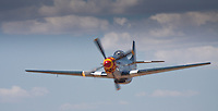 P-51 Mustang &quot;Wee Willy II&quot;<br /> Type: P-51D-25NT <br /> Serial #: 44-84961  44-73053t <br /> Registry: N7715C <br /> Owner: Steve Hinton <br /> Base: Chino CA <br /> Status: Flying <br /> The P-51 Mustang was used primarily as an escort fighter for B-17 Bombers in WWII.  There were over 15,000 built from 1940-45 and of those there are less than 300 left today, with only half of them being air worthy.