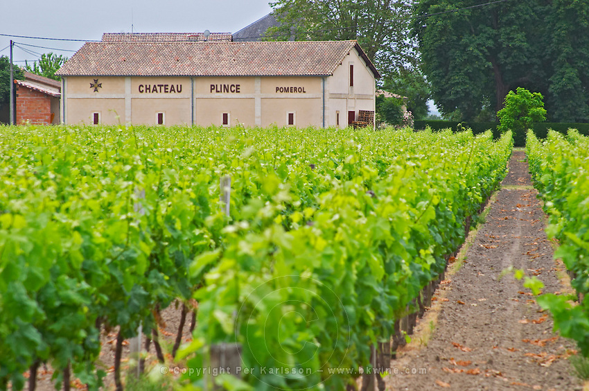 Chateau Plince winery Pomerol Bordeaux Gironde Aquitaine France