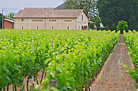 Chateau Plince winery Pomerol Bordeaux Gironde Aquitaine France