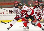 Alex Fallstrom (Harvard - 16), CJ Lee (RPI - 22) - The Harvard University Crimson defeated the visiting Rensselaer Polytechnic Institute Engineers 4-0 (EN) on Saturday, November 10, 2012, at Bright Hockey Center in Boston, Massachusetts.