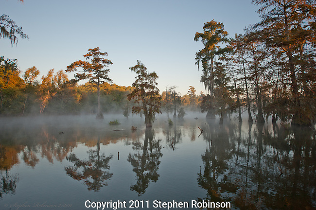 Lake Martin Morning Light