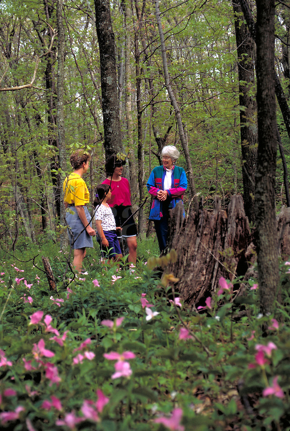 A girl, two young women and a senior woman take a hike through a wooded area full of wildflowers near the Shenandoah National Park. This area of the park is located in Nelson County. Shenandoah Virginia, Shenandoah National Park.