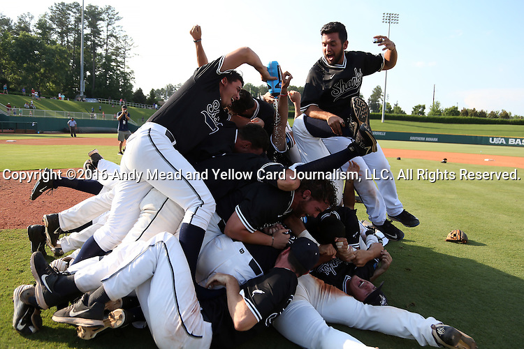 04 June 2016: Nova Southeastern players dog pile each other after the game. The Nova Southeastern University Sharks played the Millersville University Marauders in Game 14 of the 2016 NCAA Division II College World Series  at Coleman Field at the USA Baseball National Training Complex in Cary, North Carolina. Nova Southeastern won the game 8-6 and clinched the NCAA Division II Baseball Championship.