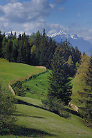 Cattle fence meandering along pasture, with snow capped mountains in the background. Kauunertal valley, Imst district, Tyrol, Austrian alps.