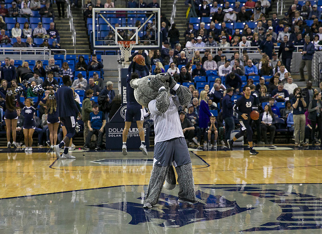 The Nevada mascot howls before an NCAA college basketball game against Utah State in Reno, Nev., Wednesday, Jan. 2, 2019. (AP Photo/Tom R. Smedes)