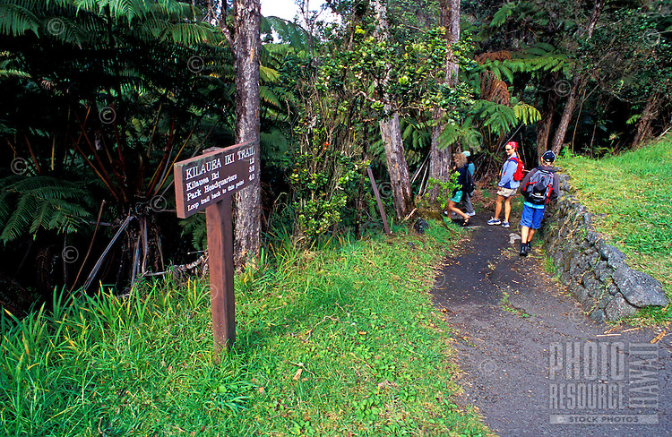 Four hikers pause along a path at Kiluea Iki Crater in Volcanoes National park on the Big Island of Hawaii