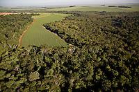 Sugarcane plantation encroaching on native rainforest near Ribeirao Preto, farming next to untouched forest, Sao Paulo State, Brazil.