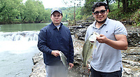 NWA Democrat-Gazette/FLIP PUTTHOFF <br />Alejandro Gonzalez (left) shows a white bass and Luis Gonzalezshows a largemouth bass the anglers from Springdale caught May 12 2017 from the War Eagle River. The two caught a mixed bag of fish, including walleye, on a variety of lures.