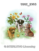GIORDANO, CUTE ANIMALS, LUSTIGE TIERE, ANIMALITOS DIVERTIDOS, paintings+++++,USGI2903,#AC# ,dogs