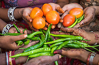 A group of women who are a part of Technoserve's kitchen garden program, hold their harvests in a kitchen garden in Bamanwali village, Bikaner, Rajasthan, India on October 24th, 2016. Non-profit organisation Technoserve works with guar farmer's wives in Bikaner, providing technical support and training for edible gardening, to improve the nutritional quality of their food and relieve financial stress on farming communities. Photograph by Suzanne Lee for Technoserve