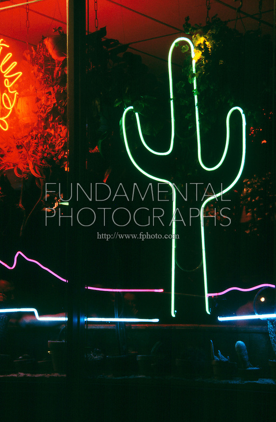 NEON SIGN<br /> Cactus Caf&eacute;<br /> Mixtures of neon and other gases emit bright colors when excited by an electric discharge.