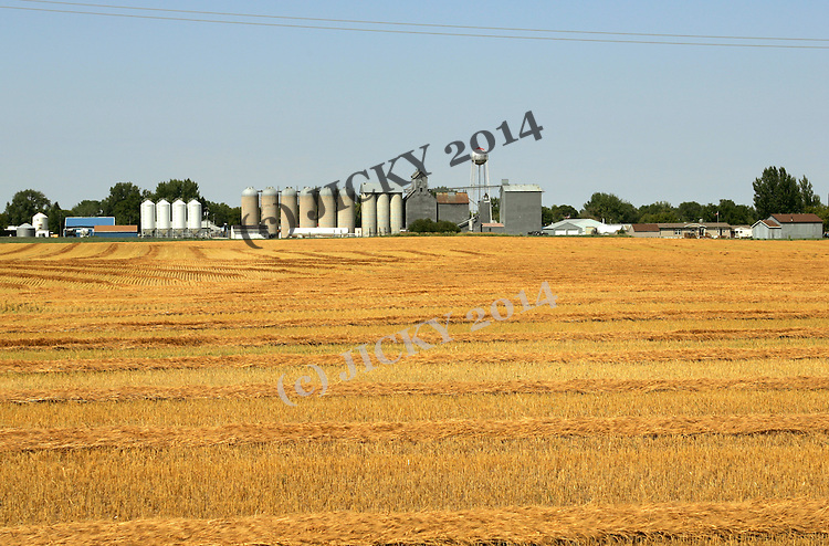 Grain elevators and harvested corn field