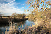 Upper reaches of the River Thames near Cricklade, Wiltshire, Uk