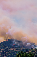 870000413 topanga wild fire burns a hillside endangering homes and creating a huge thick smoke cloud in chatsworth in la county southern california