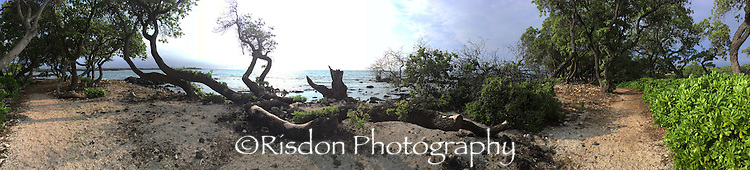 Risdon Photo Panoramic Images