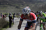 The peloton including Johnny Hoogerlang (NED) Androni Giocattoli tackle the 7th sector of strade the climb of Monte Sante Maria during the 2014 Strade Bianche race over the white dusty gravel roads of Tuscany running 200km from San Gimignano to Siena, Italy. 8th March 2014.<br /> Picture: Eoin Clarke www.newsfile.ie