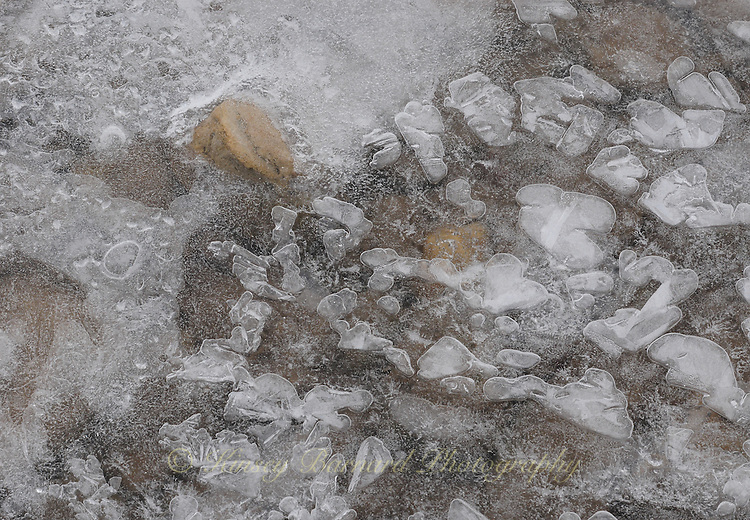 &quot;RIVER ICE-12&quot;<br /> <br /> Ice formations along a river's edge creating intricate and beautiful designs