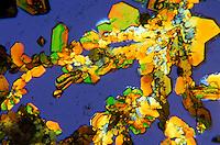 AMMONIUM DICHROMATE CRYSTALS - 100x mag<br /> (NH4)2 Cr207; Dark field