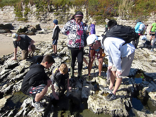 The Harker School - MS - Middle School - MS field trip to Mount Cross in the Santa Cruz mountains - Photo by MS Yearbook Staff