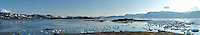 This panorama shows the M/V Auklet anchored in Heather Bay at left,, Heather Island in the middle distance, and icebergs in Columbia Bay at the far right, on a sunny spring evening in Prince William Sound, Southcentral Alaska. MULTI-IMAGE STITCHED PANORAMA. PR