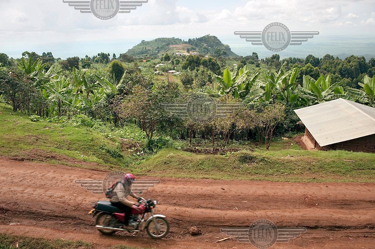 A man rides on a motorbike along a red earth track.