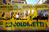 Rome February 12th 2019.Demonstration of the farmers and shepherds of Coldiretti to protest for the low price they are forced to sell oil and milk.<br /> Foto Samantha Zucchi Insidefoto