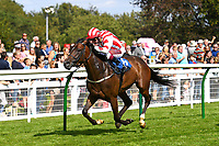 Winner of The Booker Wholesale Handicap Div 1 Clem A ridden by Oisin Murphy and trained by Alan Bailey  during Horse Racing at Salisbury Racecourse on 15th August 2019