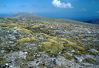 Cairngorm Plateau, Scottish Highlands