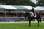 Jonathan Paget (NZL) riding Clifton Promise into the lead after the Dressage Phase of the 2013 Land Rover Burghley Horse Trials in Stamford, Lincolnshire