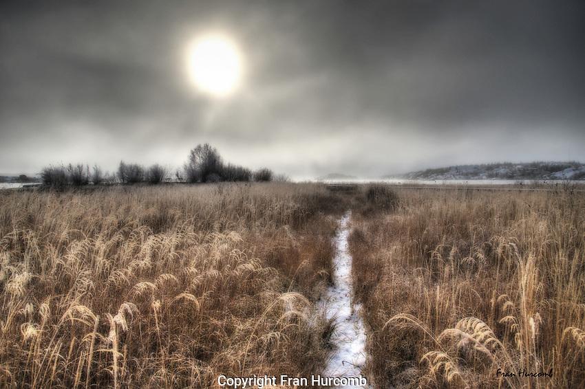 trail through the grass in autumn