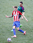 Atletico de Madrid's Jose Maria Gimenez (l) and Club Atletico Osasuna's Miguel de las Cuevas during La Liga match. April 15,2017. (ALTERPHOTOS/Acero)