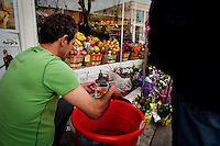 Los Angeles, California, March 19, 2011 - Mehrin Abdi pulls goldfish from a bucket for a customer  at the Jordan Market Beverly Hills. Customarilly a a bowl with goldfish is displayed for the Persian New Year symbolizing new life. ..Nowruz, the Persian New Year, marks the first day of spring and the beginning of the Persian calendar. It is marked by Haft Sin, or the seven S's, which include sabzeh (wheat, barley or lentil sprouts growing in a dish - symbolizing rebirth); samanu (a sweet pudding made from wheat germ -symbolizing affluence); senjed (the dried fruit of the oleaster tree - symbolizing love); s?r (garlic - symbolizing medicine); s?b (apples - symbolizing beauty and health); somaq (sumac berries - symbolizing the sunrise); serkeh (vinegar - symbolizing age and patience). Each of these items are laid on a table in the home. Other items include decorated eggs, symbolizing fertility, a mirror symbolizing cleanliness and honesty and a bowl with goldfish, symbolizing life within life. .