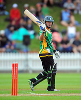 101227 HRV Cup Cricket - Wellington Firebirds v Central Stags
