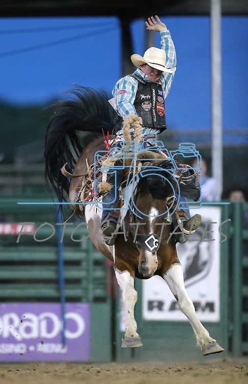 Jacobs Crawley rides in the saddle bronc competition at the Reno Rodeo in Reno, Nev. on Friday, June 19, 2015.<br /> Photo by Cathleen Allison/Nevada Photo Source