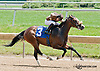 One Fast Look winning at Delaware Park on 7/17/13