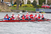 Crew: 201  WRC-JENKINS  Wallingford Rowing Club  Op MasH 8+<br /> <br /> Abingdon Spring Head 2019<br /> <br /> To purchase this photo, or to see pricing information for Prints and Downloads, click the blue 'Add to Cart' button at the top-right of the page.