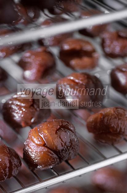Europe/France/Corse/2A/Corse-du-Sud/ Zevaco: les marrons glacés de Mme Leoni, productrice de confiseries à base de chataigne