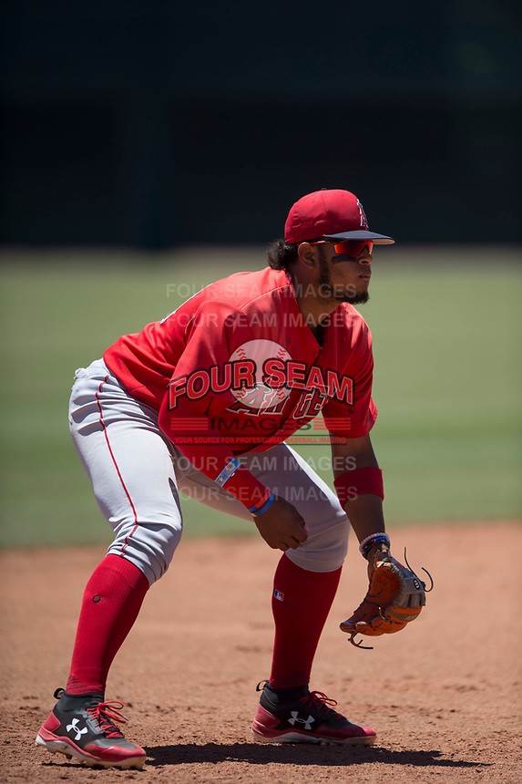 Los Angeles Angels third baseman Kevin Maitan (53) during an Extended Spring Training game against the Giants Black at the San Francisco Giants Training Complex on May 25, 2018 in Scottsdale, Arizona. (Zachary Lucy/Four Seam Images)