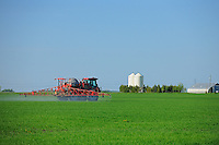 Spraying an early crop growth<br /> Dugald<br /> Manitoba<br /> Canada