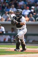 Charlotte Knights catcher Omar Narvaez (14) chases a runner back towards third base during the game against the Gwinnett Braves at BB&T BallPark on May 22, 2016 in Charlotte, North Carolina.  The Knights defeated the Braves 9-8 in 11 innings.  (Brian Westerholt/Four Seam Images)