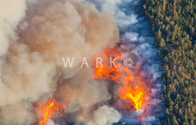 East Peak wildfire near Walsenburg, Colorado. June 2013