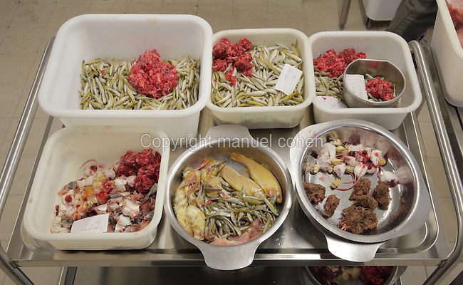 Trays of prepared food for feeding carnivorous animals, in the kitchens of the new Parc Zoologique de Paris or Zoo de Vincennes, (Zoological Gardens of Paris or Vincennes Zoo), which reopened April 2014, part of the Musee National d'Histoire Naturelle (National Museum of Natural History), 12th arrondissement, Paris, France. Picture by Manuel Cohen