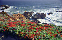 Flowers, hills, breakers and deep blue sea