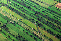 Felder: EUROPA, DEUTSCHLAND, NIEDERSACHSEN,  (GERMANY), 05.09.2007:Deutschland, Niedersachsen, Elbe Niederung bei Hittbergen, Landwirtschaft, Feld, Knick, Baeume, Reihen,  Acker,  Spuren, Luftaufnahme, Luftbild, Luftansicht, Wirtschaft, Agrar, Subventionen, .c o p y r i g h t : A U F W I N D - L U F T B I L D E R . de.G e r t r u d - B a e u m e r - S t i e g 1 0 2, 2 1 0 3 5 H a m b u r g , G e r m a n y P h o n e + 4 9 (0) 1 7 1 - 6 8 6 6 0 6 9 E m a i l H w e i 1 @ a o l . c o m w w w . a u f w i n d - l u f t b i l d e r . d e.K o n t o : P o s t b a n k H a m b u r g .B l z : 2 0 0 1 0 0 2 0  K o n t o : 5 8 3 6 5 7 2 0 9.C o p y r i g h t n u r f u e r j o u r n a l i s t i s c h Z w e c k e, keine P e r s o e n l i c h ke i t s r e c h t e v o r h a n d e n, V e r o e f f e n t l i c h u n g n u r m i t H o n o r a r n a c h M F M, N a m e n s n e n n u n g u n d B e l e g e x e m p l a r !.